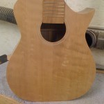 Arch Harp Guitar