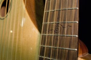 Tonedevil S-12HG Harp Guitar with Michael Hedges Spiral Engraved on the Fingerboard