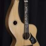 HM-12 Harp Mandolin Tonedevil Harp Guitars Official Website image 1