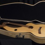 Harp Guitar Hard Case