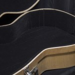 Harp Guitar Hard Case Interior