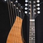 HM-14 Harp Mandolin Tonedevil Harp Guitars Official Website image 5