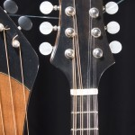 HM-14 Harp Mandolin Tonedevil Harp Guitars Official Website image 8