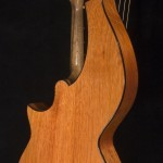 HM-14 Harp Mandolin Tonedevil Harp Guitars Official Website image 11