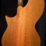 HM-14 Harp Mandolin Tonedevil Harp Guitars Official Website image 3