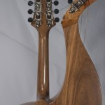 Harp Mandolins Tonedevil Harp Guitars Official Website image 9